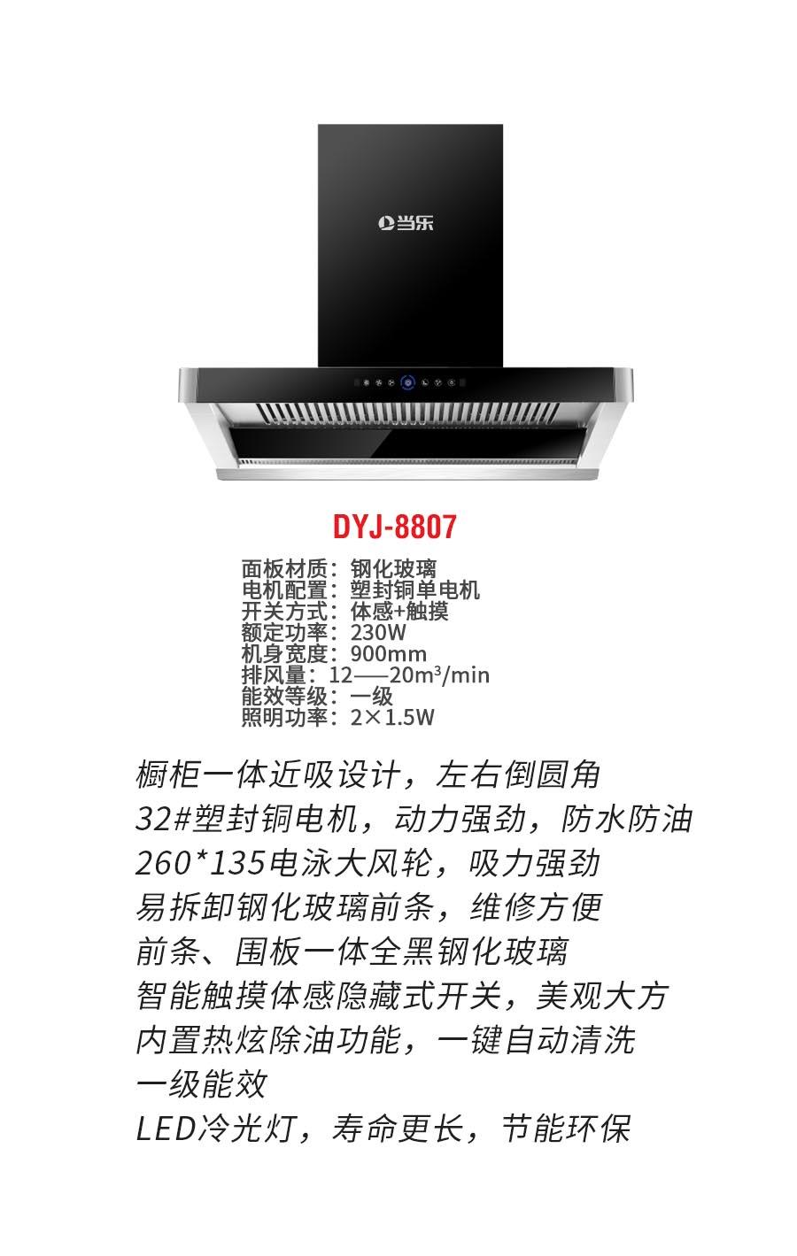 DYJ-8807b.jpg