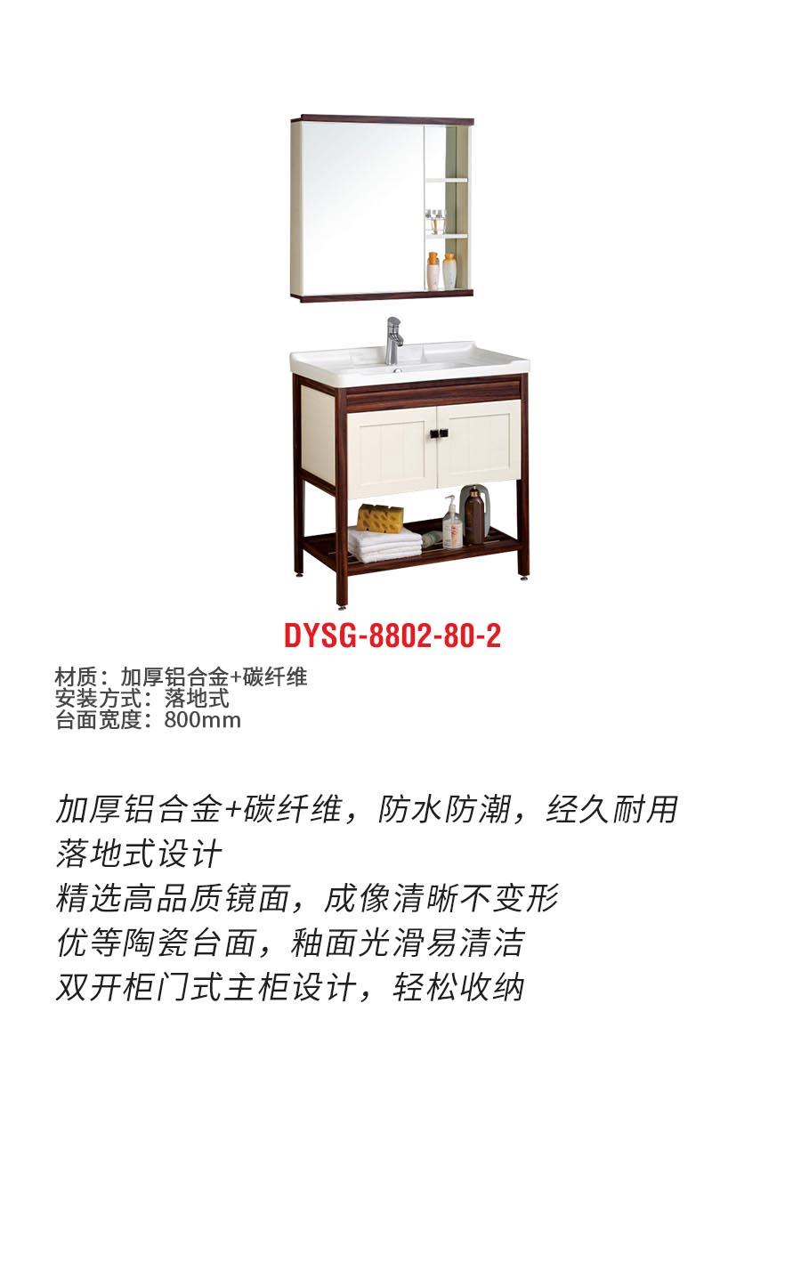DYSG-8802-80-2b.jpg