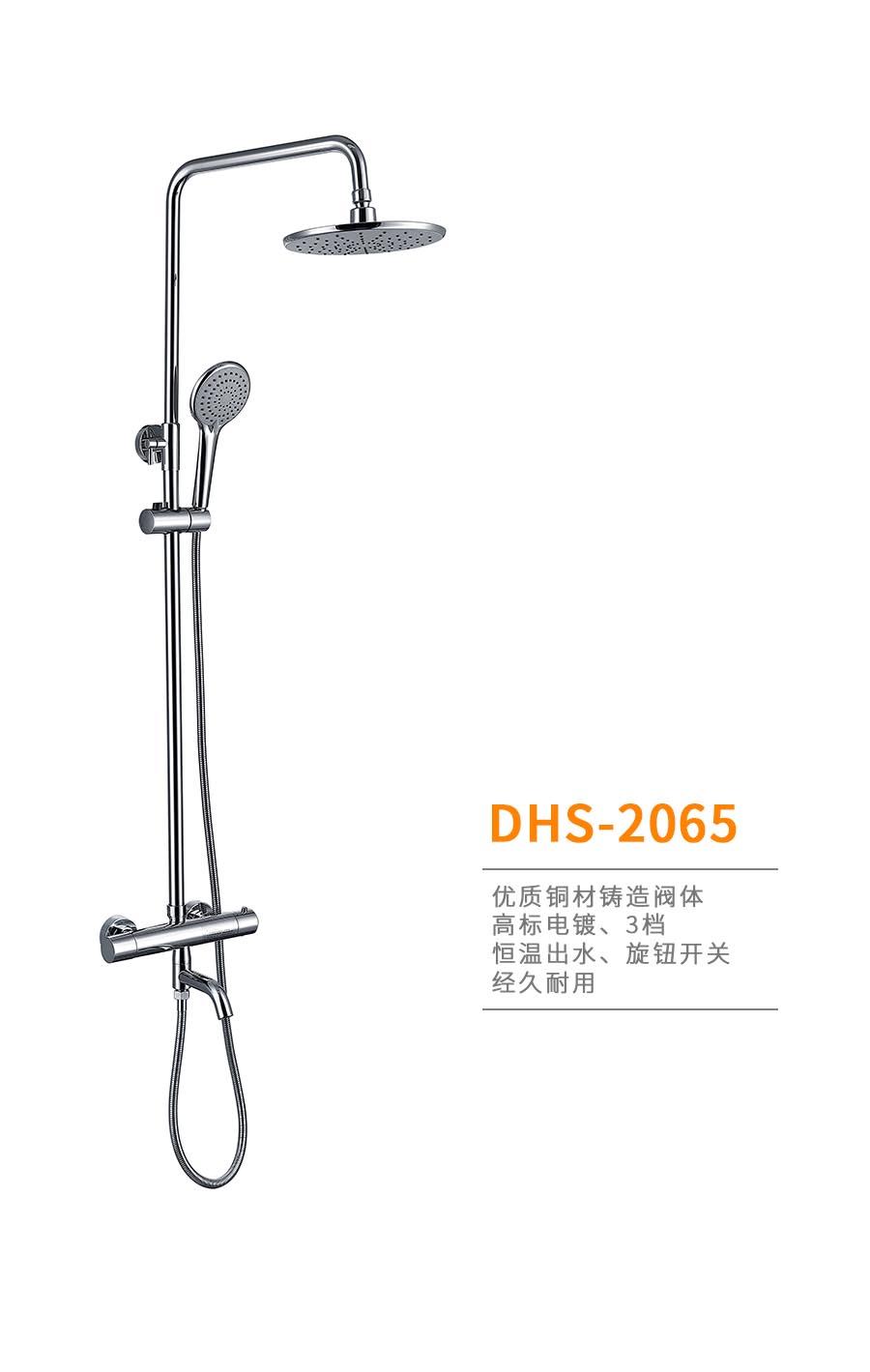 dhs-2065b.jpg